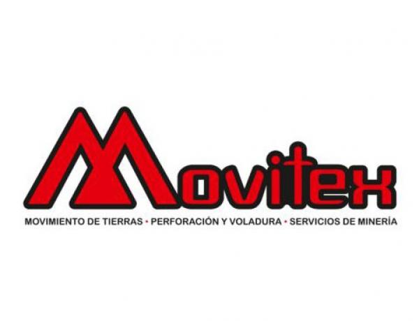 Auditoria Reglamentaria Voluntaria Movitex